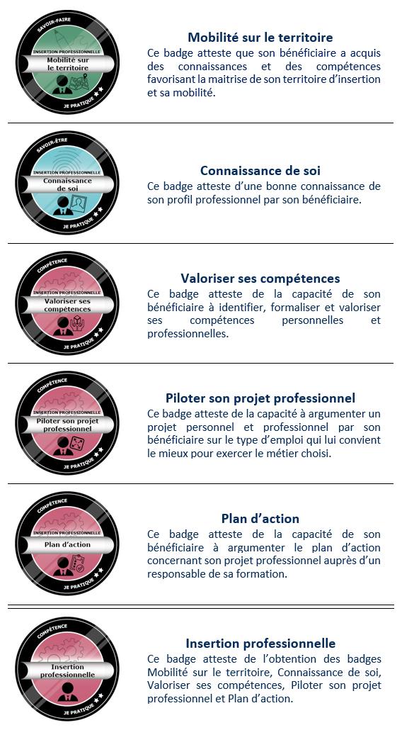 open badges Insertion professionnelle