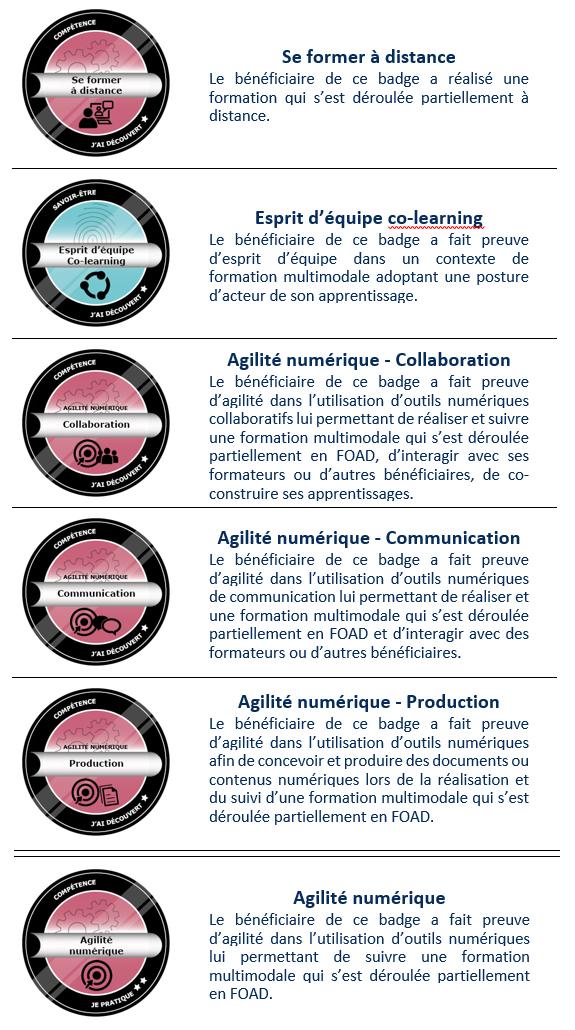 open badges Multimodalités